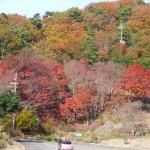 北近畿・北陸 2014 冬旅行 ⑥ 敦賀~三方五湖