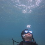 和歌山(1) スキューバ・ダイビング 白崎海洋公園