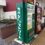 2016 初冬 虎キチ 旅行記 in 北近畿 (6) 豊岡 カバンストリート~コウノトリの郷