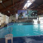 和歌山(3) 白崎海洋公園 ダイビング