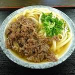 讃岐ツアー2010-2 No11(九軒目) (徳島)名麺堂(めいめんどう)北島店