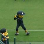 聖地 阪神甲子園球場 阪神タイガース2011(05/26 ロッテ戦)