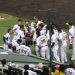 聖地 阪神甲子園球場 阪神タイガース2011(07/29 横浜戦)