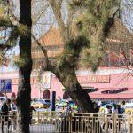 2019 3月(2) 中国・北京 天安門広場