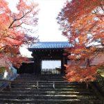 京都 紅葉 比叡山 真如堂 下鴨神社