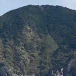 虎キチ 2020【FEB-2】(7)旅行記 in 沖縄 渡嘉敷島 ホエール・ウォッチング 月の翼