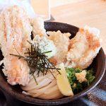 堺・堺東 うどん 麺くいやまちゃん