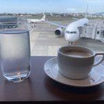 虎キチ 2020【JUNE-2】(1) 旅行記 JGC修行《19》JAL 2081便 ITM-OKA