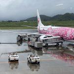 虎キチ 2020【JUNE-3】旅行記(13)JGC 南ぬ島 石垣空港