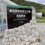虎キチ 2020【NOV-2】旅行記(11)沖縄・渡嘉敷島→阿嘉島→那覇